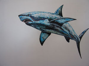 Grand requin blanc michel perrier artiste peintre - Dessin de requin blanc ...