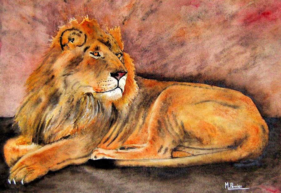 lion fond rose