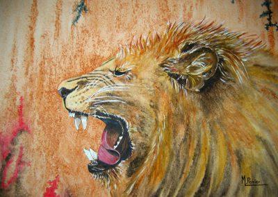 Lion (s)